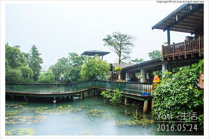 160524 花蓮光復-馬太鞍欣綠農園 (02)