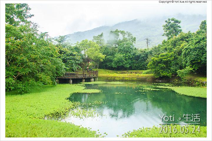 160524 花蓮光復-馬太鞍欣綠農園 (04)