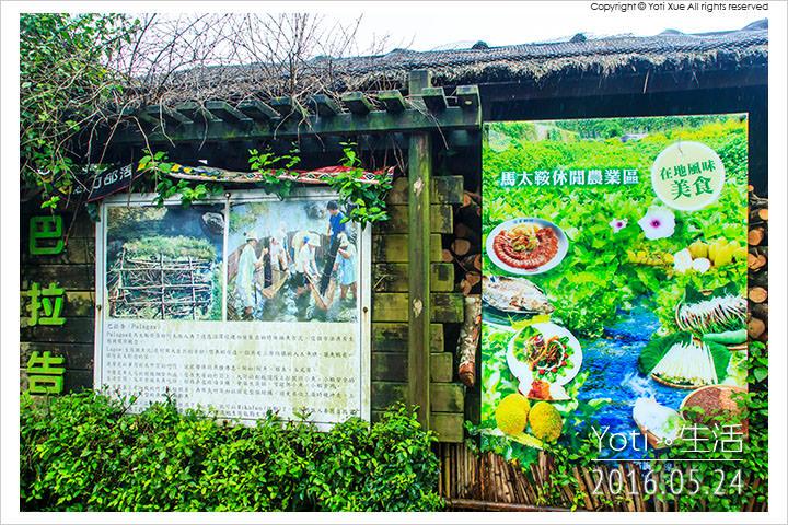 160524 花蓮光復-馬太鞍欣綠農園 (05)