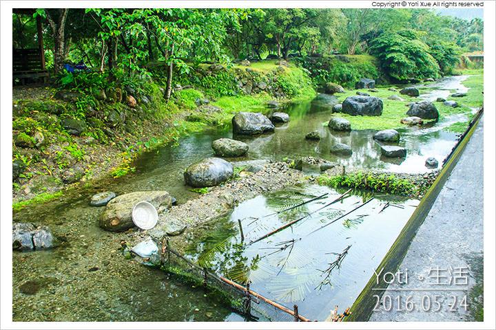 160524 花蓮光復-馬太鞍欣綠農園 (07)