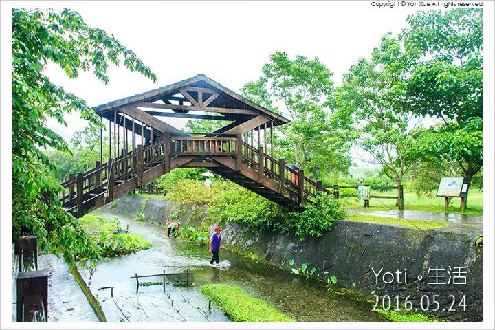 160524 花蓮光復-馬太鞍欣綠農園 (08)