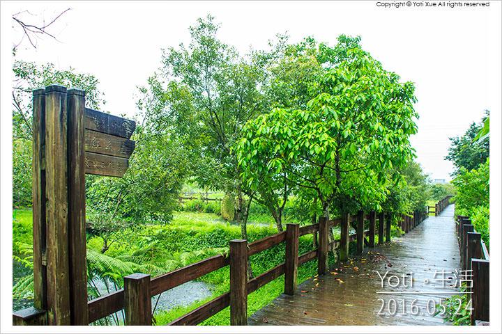 160524 花蓮光復-馬太鞍欣綠農園 (10)