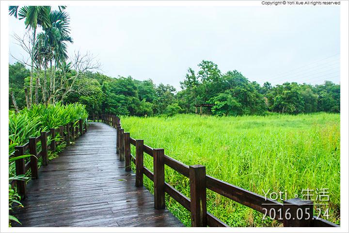160524 花蓮光復-馬太鞍欣綠農園 (11)