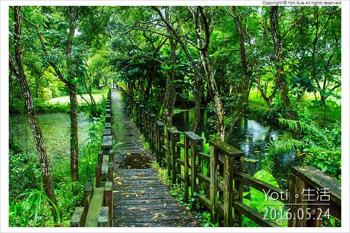 160524 花蓮光復-馬太鞍欣綠農園 (13)