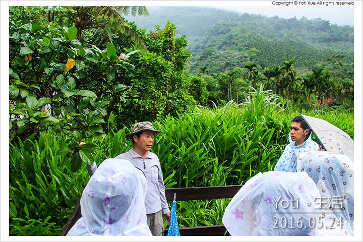 160524 花蓮光復-馬太鞍欣綠農園 (14)