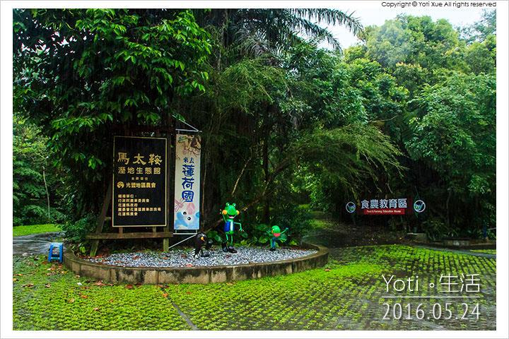 160524 花蓮光復-馬太鞍欣綠農園 (21)