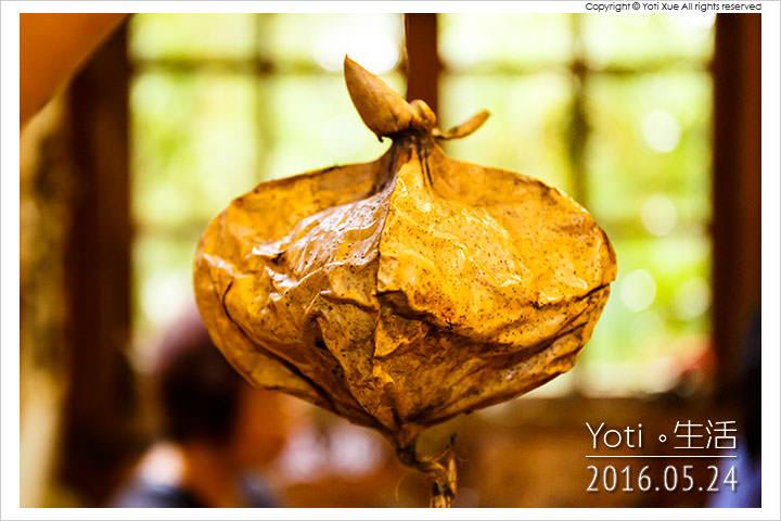 160524 花蓮光復-馬太鞍欣綠農園 (31)