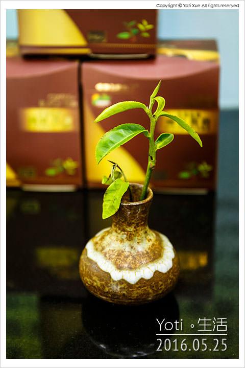 160525 花蓮瑞穗-蜜香紅茶生態故事館 (08)