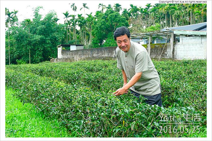160525 花蓮瑞穗-蜜香紅茶生態故事館 (09)