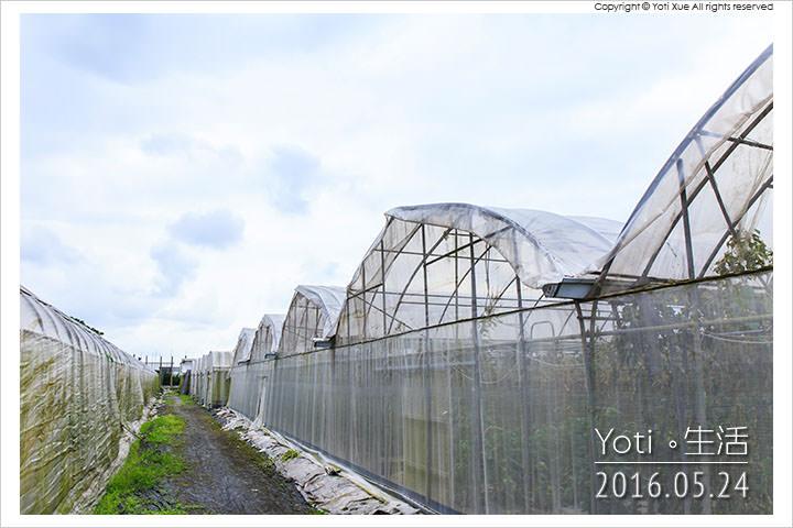 160524 花蓮壽豐-江玉寶生態農場 (08)