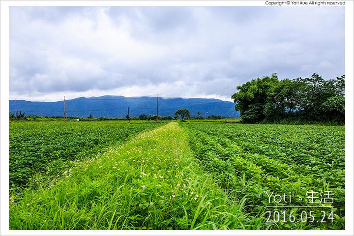 160524 花蓮壽豐-江玉寶生態農場 (18)