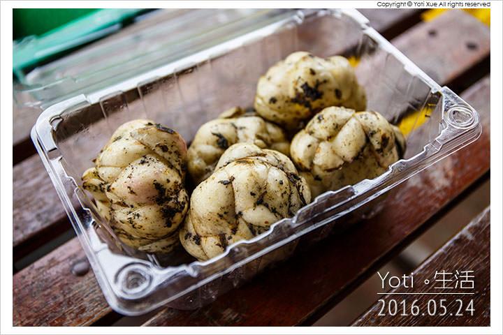 160524 花蓮壽豐-江玉寶生態農場 (24)