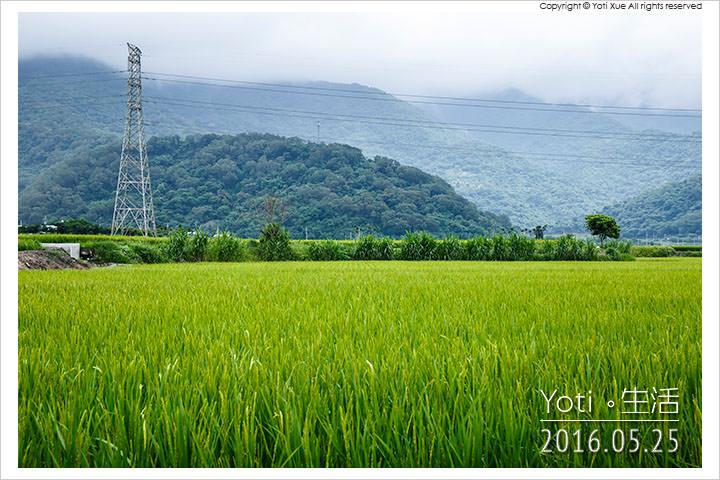 160525 花蓮富里-馬里旺休閒農場 (01)