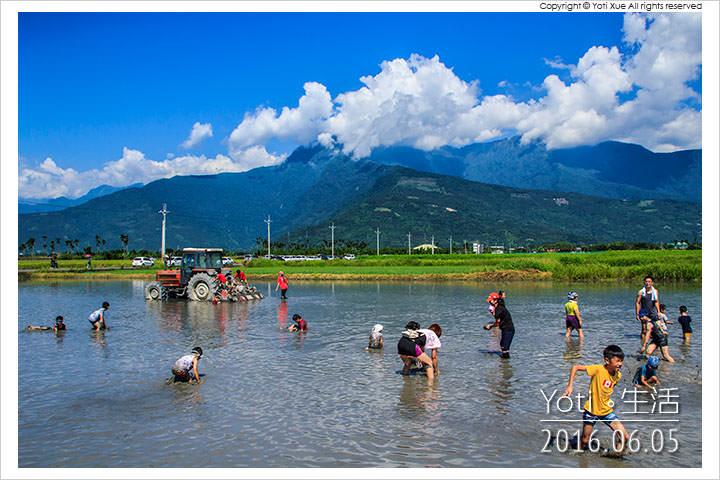 160605 花蓮鳳林-找到田國際泥巴運動會 (03)