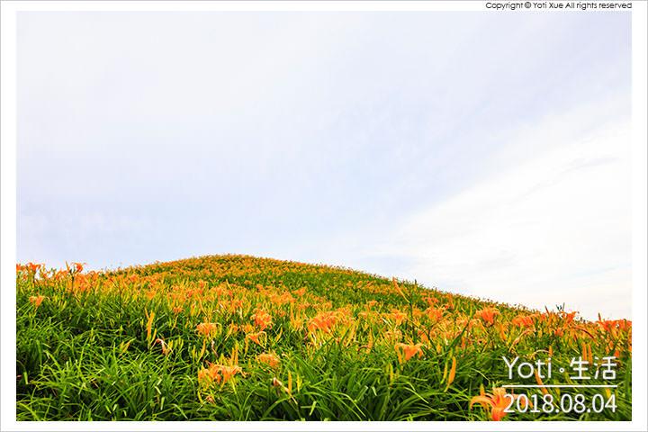 花蓮富里-六十石山