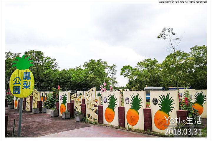 花蓮瑞穗-富興社區森林公園-鳳梨公園