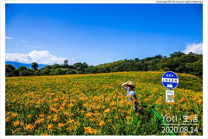花蓮玉里-赤柯山-小瑞士農場