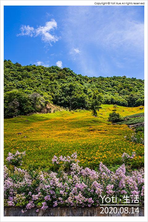 花蓮玉里-赤科山-黎明農園