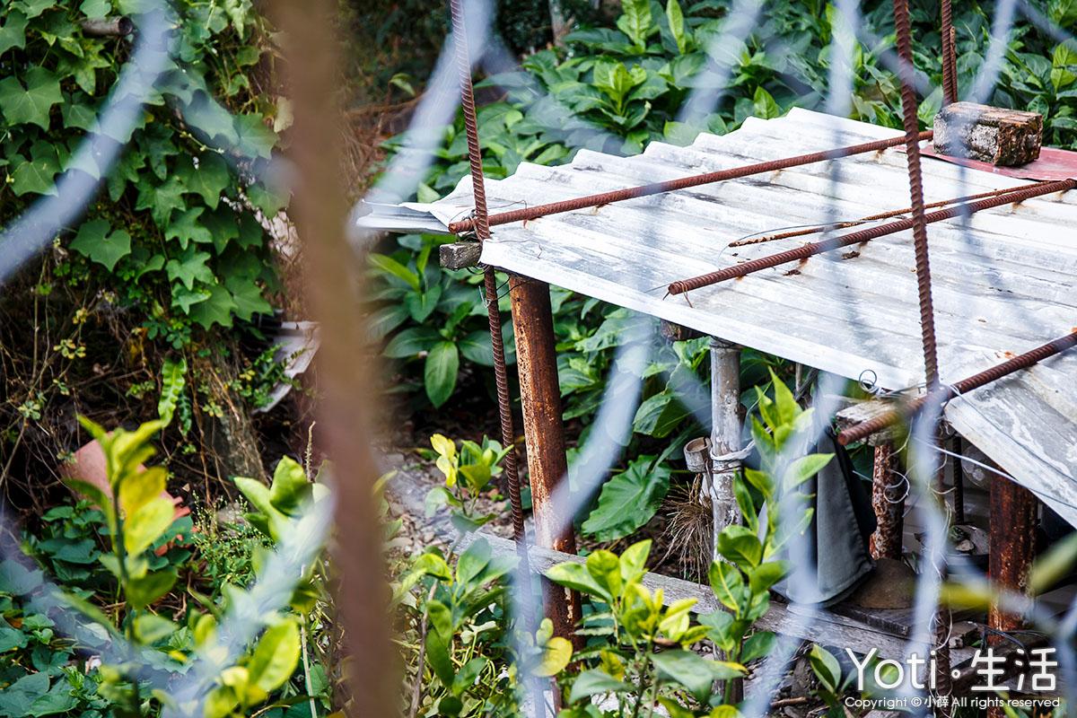 台東市區-射馬干部落木雕藝術村-台東縣射馬干青年文化發展協會-建和社區